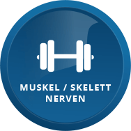 Onlineshop Icon Muskel