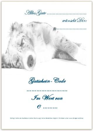 Gutschein Motiv Australian Shepherd S/W