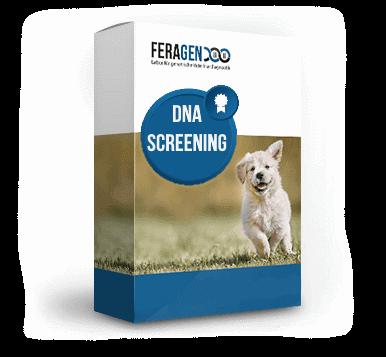 dna-screening