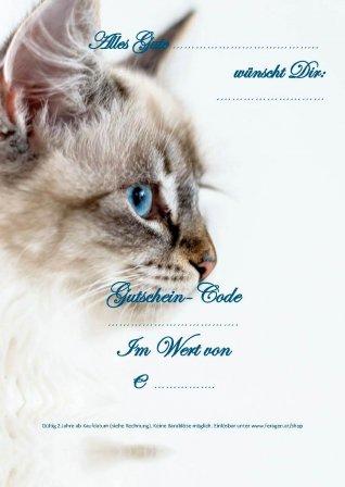 GS_cat_1