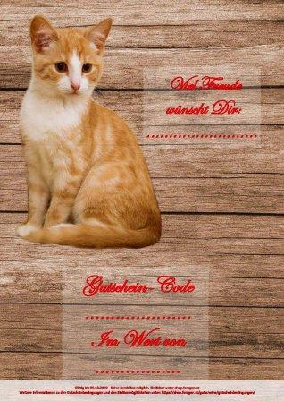 GS_cat_2